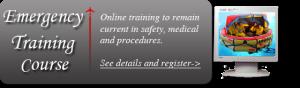 online flight attendant training